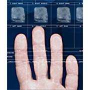 Система электронного дактилоскопирования ПАПИЛОН «Живой сканер фото