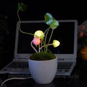 "Светильник ""Грибы"" Mushroon Sensor Light фото"