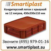 Пластиковый лоток для кондитерских изделий 430х330 мм с крышкой фото