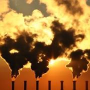 Экологические изыскания фото