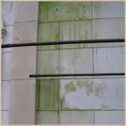 Средство для удаления мха и плесени с гранита мрамора кирпича бетона Симферополь. Удаление грибка с гранита мрамора кирпича бетона Симферополь фото