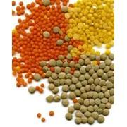 Переработка зернобобовых по технологии ЕСО фото