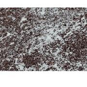 Слэб гранитный Гранатовый Амфиболит фото