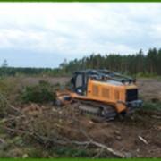 Измельчение деревьев фото