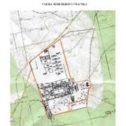 Продажа земельного участка 33,7 га для строительства комплекса по переработке сельскохозяйственной продукции и животноводства фото