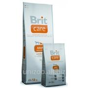 Сухой корм для собак Brit Care Adult Medium Breed 12 кг фото