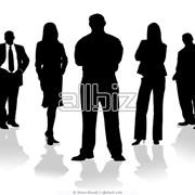 Обучение корпоративных тренеров фото