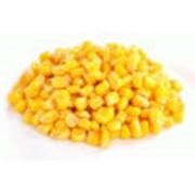 Кукуруза (зерна) зам. фото