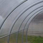 Теплица парник Гарант-Триумф дуги 40х20 6 м. фото