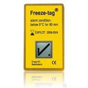 Температурный индикатор замораживания Freeze-tag (пр-во Швейцария) фото