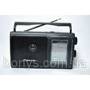 Радио R2031 MW/FM/TV/SW1-SW9 фото