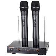 Профессиональная радиосистема TAKSTAR TS-6310 на два микрофона фото