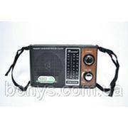 Радио RM2600 FM/AM/SW3 фото
