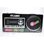 Радио AT-8811 FM фото
