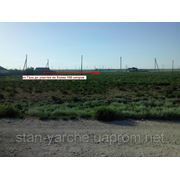 Продажа участка, Медведево, Черноморский район, АРК фото