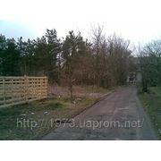 Земельный участок в лесу. фото
