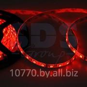 LED лента герметичная в силиконе, ширина 10 мм, IP65, SMD 5050, 60 диодов/метр, 12V, цвет светодиодов RGB фото