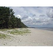 Земельный участок на берегу Рижского залива Балтийского моря фото