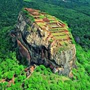 Сочные краски джунглей приглашают в Шри-Ланку фото