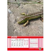 Календари-трио настенные фото