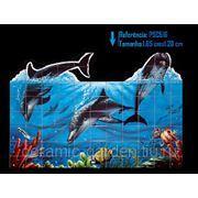 Дельфины прыгающие из воды-PSC-516