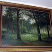 Картина лесной пейзаж. фото