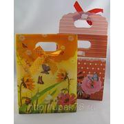 Пакет подарочный 17х12см | пакеты подарочные пластиковые | подарочная упаковка | фото