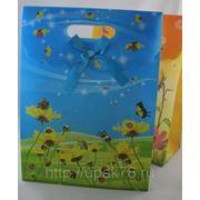 Пакет подарочный 26х19см | пакеты подарочные пластиковые | подарочная упаковка | фото