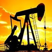 Нефть сырая Львов, Львовская область фото