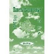 Пакет фасовочный Евро (24х37)-6 Робот (700) кленовый лист зеленый /10 фото