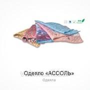 Одеяло Ассоль 200х220 фото
