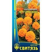 Насіння Чорнобривці розлогі Петіт оранжеві, 0,5г фото