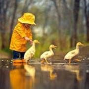 Пазл Castorland Живопись 500 деталей, Друзья под дождем 47*33 см фото