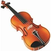 Скрипка Varna SV1413 фото