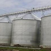 Зернохранилища фото