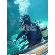 Костюмы для подводной охоты фото