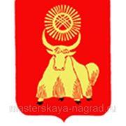 Компенсация доставки до Кызыла фото