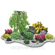 Ландшафтный дизайн, озеленение, благоустройство фото
