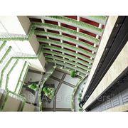 Озеленение офисов, квартир, коммерческих помещений. фото
