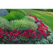 Ландшафтное проектирование, озеленение, укладка газона +7(777)-489-70-05 ozelenenie.tov.kz фото