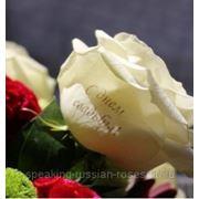 """Печать на розах """"С днем свадьбы!"""" фото"""