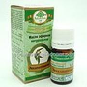 Эфирное масло Эвкалипт, 5 мл Никитский Ботанический Сад при респираторных заболеваниях, ревматических и мышечных болях фото