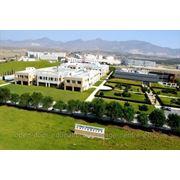 Скидки на обучение в Международном Университете Кипра! фото