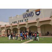 Образование в ОАЭ. University of Wollongong in Dubai фото