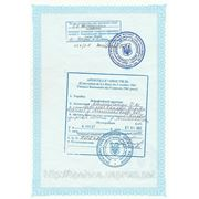 Легализация документов, проставления апостиля фото