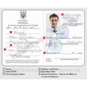 Work permit , registration in Ukraine фото
