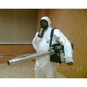 Уничтожение насекомых, дезинсекция фото