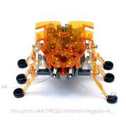Робот-насекомое HEXBUG Микро-робот Жук фото