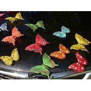 Бабочки свадебные украшения для лимузинов фото