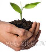 Создание положения об экологическом производственном контроле, действующем в организации фото